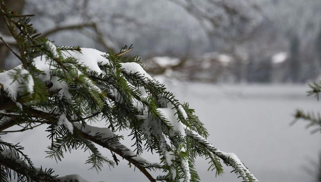 neige-lorraine-15-cm-metz-today