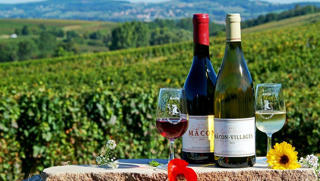 vins-de-bourgogne-metz-today