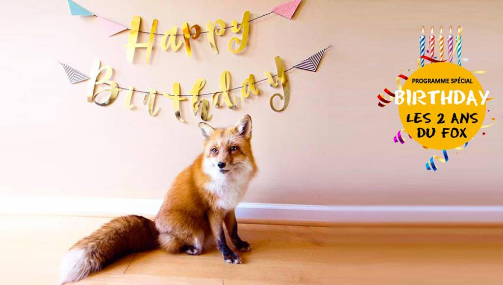 fox-deux-ans-metz-today