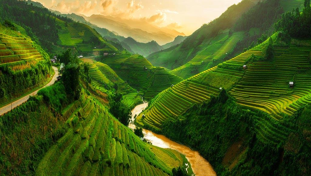 vietnam-fim-metz-today